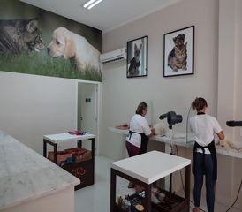 Vet Vale Clinica Veterinaria by Negócios Locais