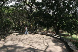 Parque Municipal São Domingos by Apontador