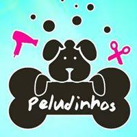 Peludinhos Pet Shop by Ray Filho