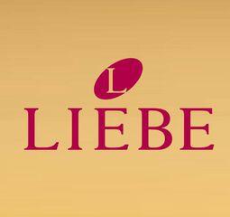 Liebe Lingerie - Shopping Parangaba by Isabel Lima ... 2fdb02acef5