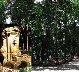 Parque Trianon by Marlene Makie Morita