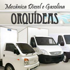 Mecânica Diesel e Gasolina Orquideas Ltda by Mecanica Diesel Orqudeas Ltda
