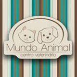 Mundo Animal - Hospital 24 Horas by Thalita Rodrigues
