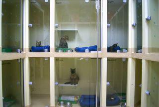Mundo Animal - Hospital 24 Horas by Apontador