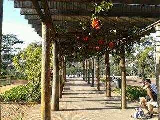 Parque do Cordeiro by Nádia Ribeiro De Lima
