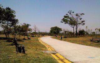 Parque Villa Lobos by Ray Filho