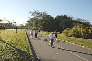 Parque Villa Lobos by Augis Frazon