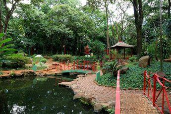 Foto de  Bosque e Zoologico Municipal Dr Fabio de Sa Barreto enviada por Andreia Pereira Da Silva em