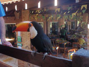Foto de  Ubatã Termas Parque Hotel enviada por Helena Maria Hauck De Castro em
