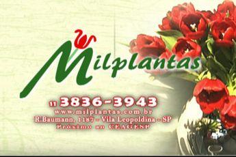 Foto de  Mil Plantas Comercial . - Vila Leopoldina enviada por AÇÃO RADICAL PUBLICIDADE em