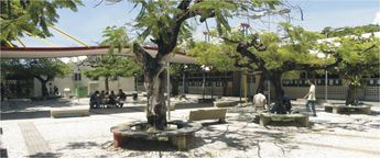 Foto de  Ucsal-Universidade Católica do Salvador - Federação enviada por Alane Viana em