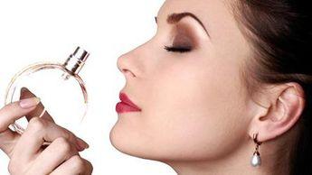 Foto de  Perfumaria Legi enviada por Apontador em