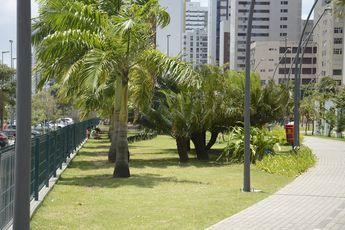 Foto de  Parque Dona Lindu enviada por Silvannir Jaques em 19/02/2015