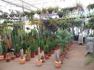 Foto de  Shopping Garden Sul enviada por Thiago Ganzarolli Da Silva em