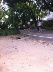 Foto de  Parque da Jaqueira Recife enviada por Alexandre Santos Leal em