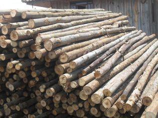 Foto de  Escora Forte Comercio de Madeiras enviada por Escora Forte Comercio de Madeira em
