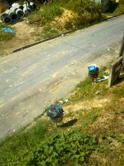 Foto de  Tumpex Empresa Amazoense de Coletagem de Lixo - Flores enviada por Andrew Bender em