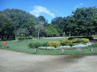Foto de  Parque Moinhos de Vento - Parcão enviada por Do Surf em