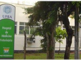 Foto de  Hospital Veterinário da Ufba - Ondina enviada por Giovanna  em