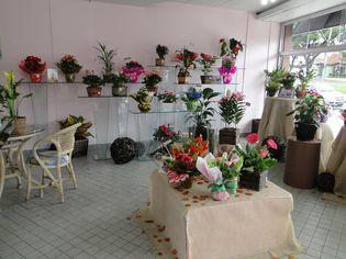 Foto de  Flores, Naturalmente enviada por Laura / Elizete em 15/04/2011