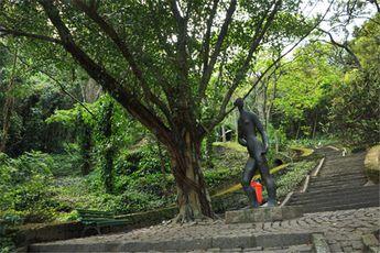 Foto de  Parque da Catacumba enviada por Edielle Moura em 11/10/2014