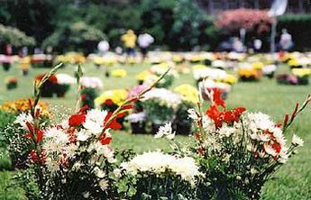 Foto de  Jardim Cemitério Pax - Sorocaba enviada por Apontador em 04/04/2011