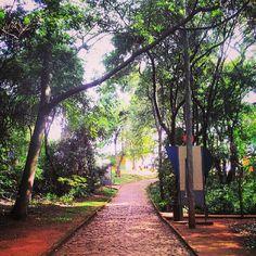 Foto de  Parque das Mangabeiras enviada por Camila Natalo em 14/01/2015