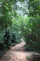Foto de  Parque Ecológico do Guarapiranga enviada por Paula Donegan em
