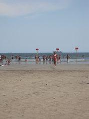Foto de  Praia do José Menino enviada por Prof Christian Sznick em 22/03/2015