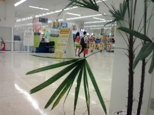 Foto de  Carrefour - Aricanduva enviada por Milton De Abreu Cavalcante em