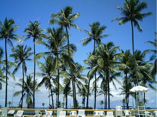 Foto de  Salvador Piatã Sesc Hotel enviada por Do Surf em 19/10/2011