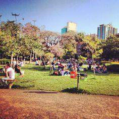 Foto de  Parque Moinhos de Vento - Parcão enviada por Camila Natalo em 14/01/2015