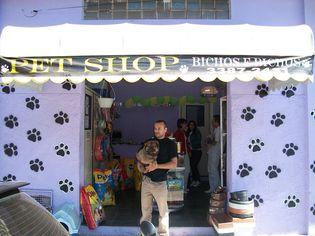 Foto de  Pet Shop Bichos e Bichos enviada por Pet Shop Bichos E Bichos em 14/09/2010