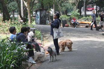 Foto de  Parque Buenos Aires enviada por Paula Donegan em