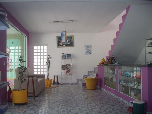 Das geraes centro de est tica animal est tica rua otto for Decoraciones para centro de estetica