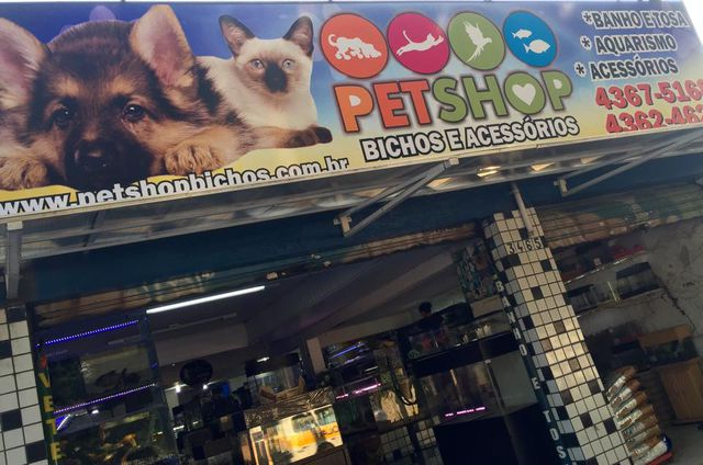 Pet shop bichos acess rios pet shops avenida senador for Oficina 9646 la caixa